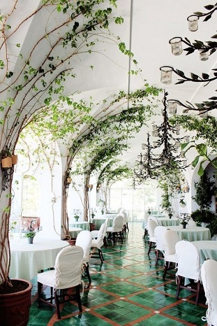 decoration-restaurant-bois-plante
